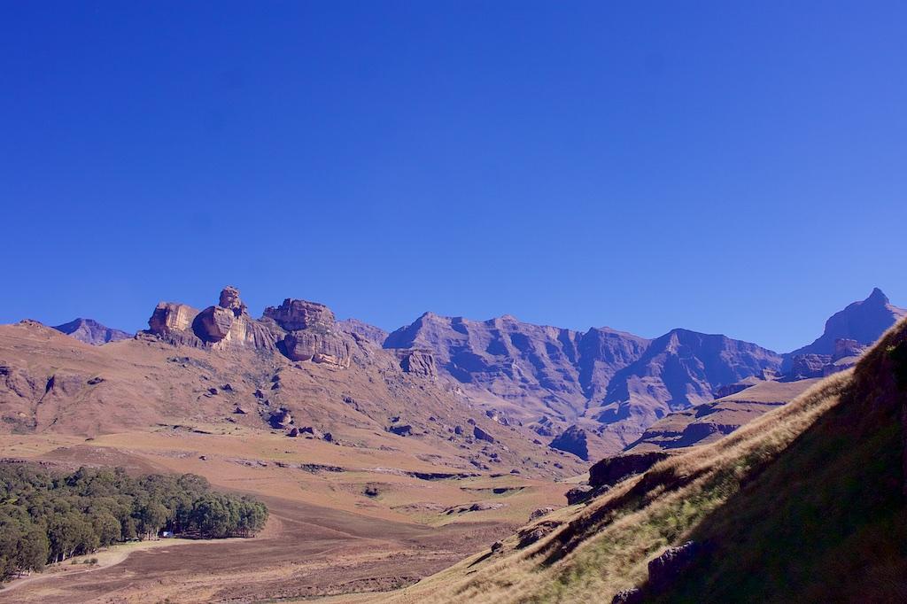 Berg 11